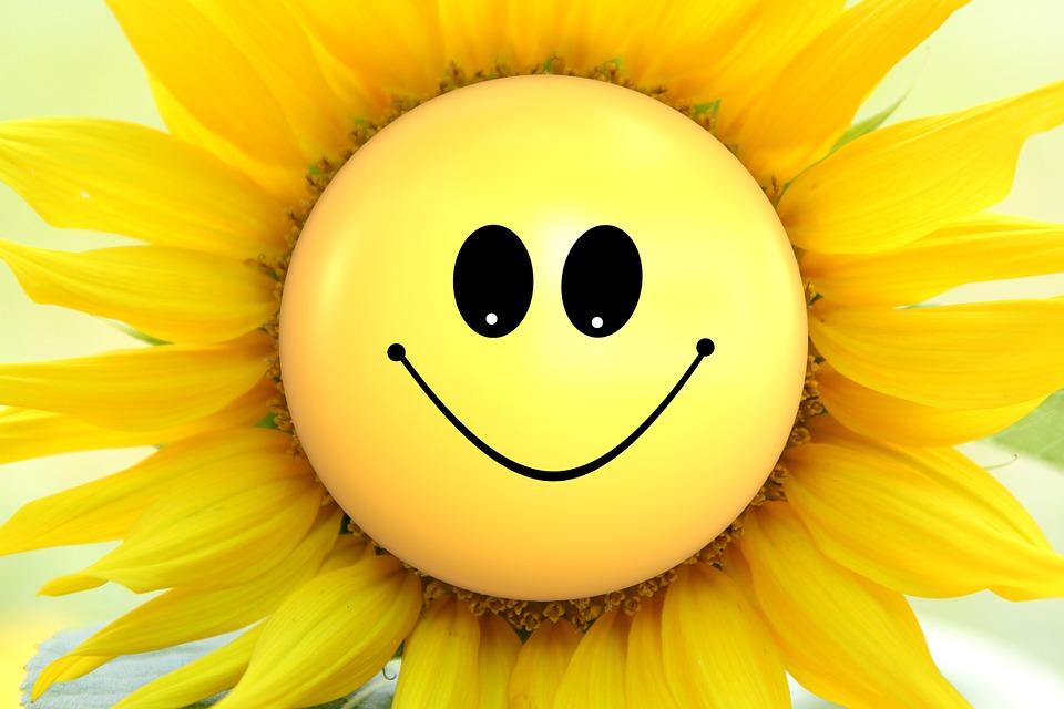 hitze smiley